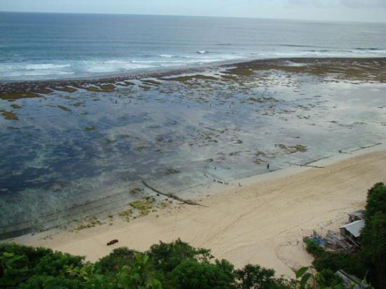 Nusa Dua Beach: We can see the reef very clear from here.