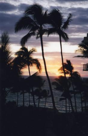 Wailea, HI: Hawaii....che spettacolo!!