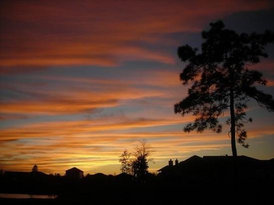 Bilde fra Jacksonville