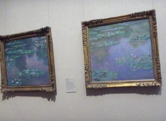 Kunstmuseum: Monet's Water Lillies