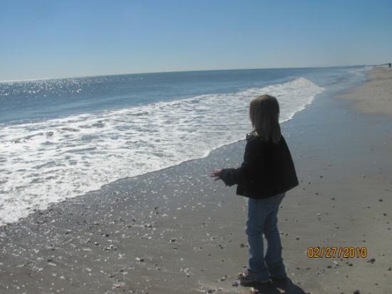 Jacksonville, FL: Fernandina beach