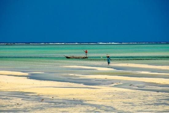 spiaggia di Dongwe costa est Zanzibar