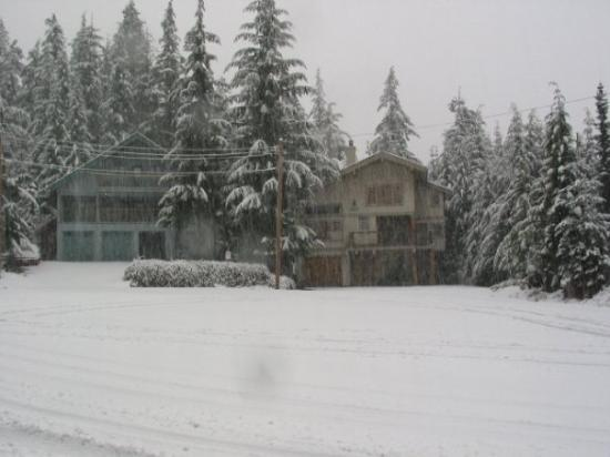 Ski House in Whistler Canada