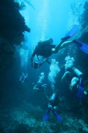 San Pedro, Belize: Diving in Belize
