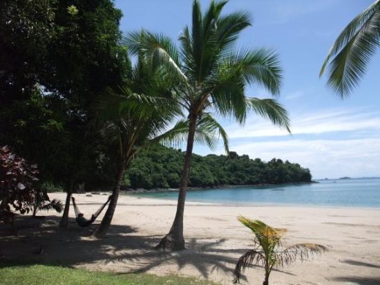 Bilde fra Isla de Coiba