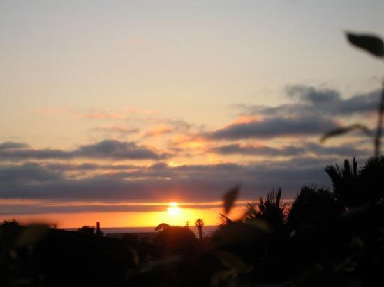 Hilton Head, SC: IMG_1277