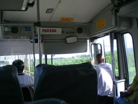 Puerto Viejo, Costa Rica: Rough buses!