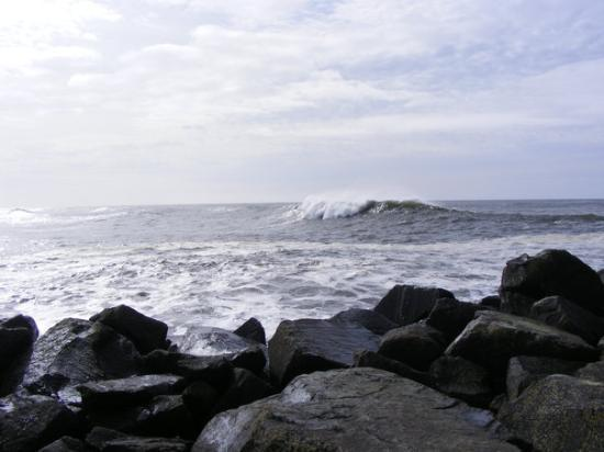 Westport, WA: Big swell..