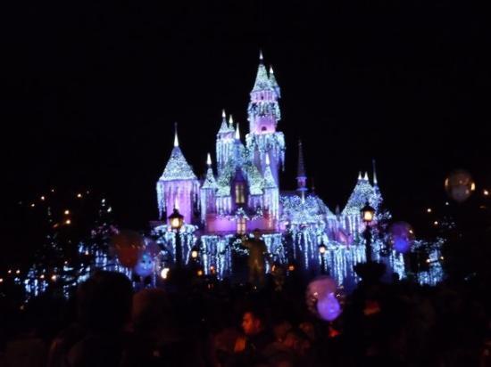 Disneyland Park: So pretty!