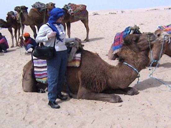 Riding a camel in the Sahara Desert in Tunisia. Our Arab tour guide tied the headdress for me to