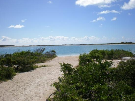‪بروفيدنسياليس: Turks and Caicos, Caribbean‬