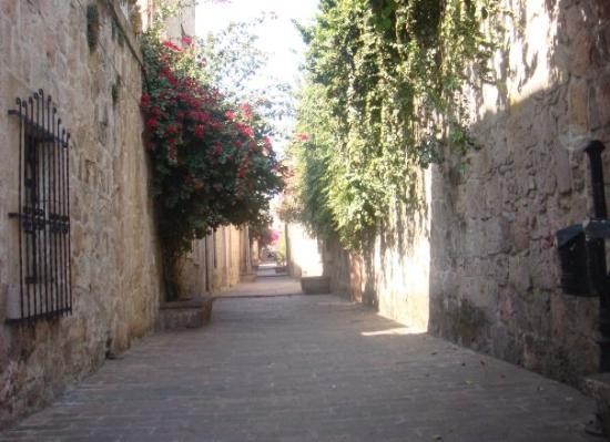 Bilde fra Morelia