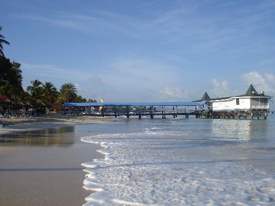 Halcyon Cove by Rex Resorts: Beach at Halcyon Cove