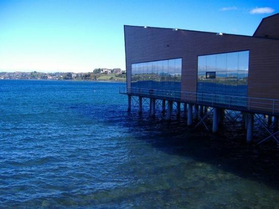 October 16, 2006 Puerto Varas, Chile