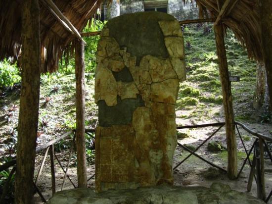 Bilde fra Tikal National Park