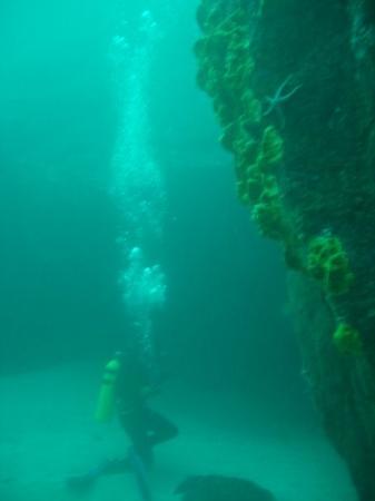 Bilde fra La Serena