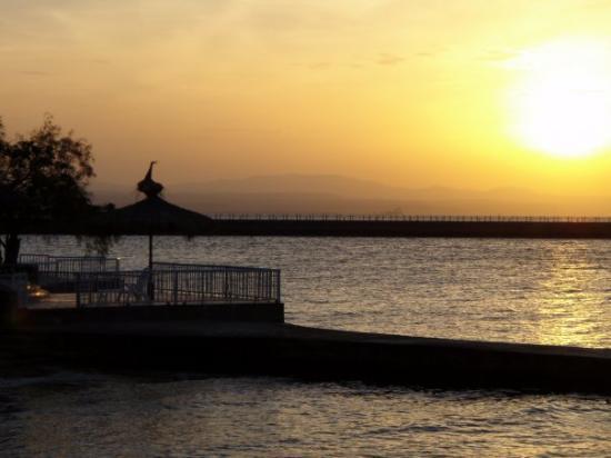 Djibouti, Djibouti: Le Héron