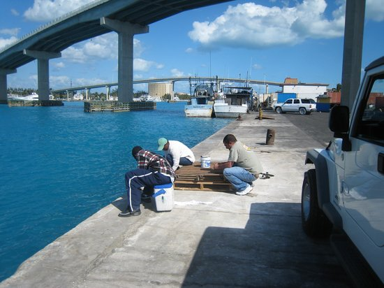 """waste and bahamas fishing The hull truth - boating and fishing recreational regulations"""" and """"bahamas"""" federal fishing regulations are available from the was a waste of breath."""