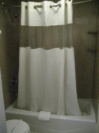 Travel Inn: shower/bath