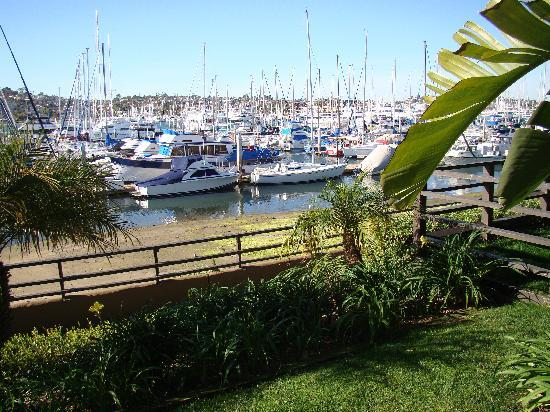 Best Western Plus Island Palms Hotel & Marina: View from our front door