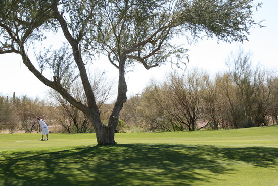 ‪Gold Canyon Resort - Sidewinder Golf Course‬