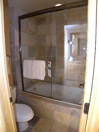 Mountain Lodge Telluride: bath and toilet