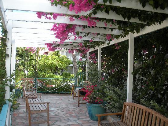 Grand Case Beach Club: Outdoor reception area