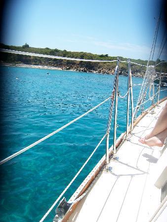 Fury Charters: sailing up to Buck Island