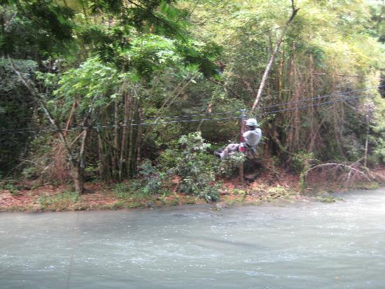 zip-line through the YS Falls