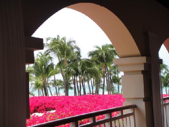 Hyatt Regency Aruba Resort and Casino: Hyatt Aruba