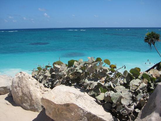 Tulum mayaruiner: overlooking the beautiful beach