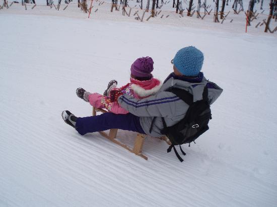 Nikko Yumoto Onesen Ski Resort: そり遊び_2