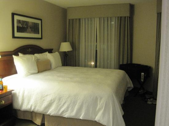 Hampton Inn & Suites Reagan National Airport: looking at the king bed from the vanity