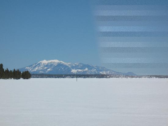 Mormon Lake Lodge and Campground : Frozen Mormon Lake