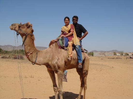 Ajmer, India: camel safari
