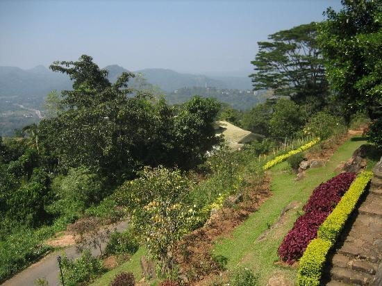 Amaya Hills Kandy: view from the pool 1
