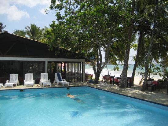 Paradise Beach Club: pool and beach