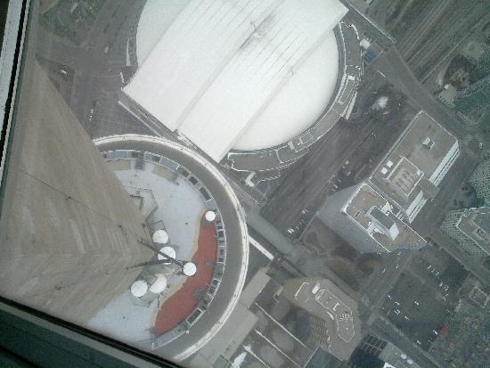 CN Tower: Glass Floor - Amazing!!!!