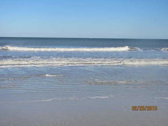 Jacksonville, FL: I <3 <3 <3 <3 the ocean!