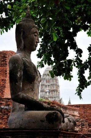 Ayutthaya Boat & Travel: At Ayutthaya
