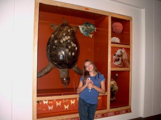 Museum for vitenskap og industri: Artazia and Dude (her turtle)