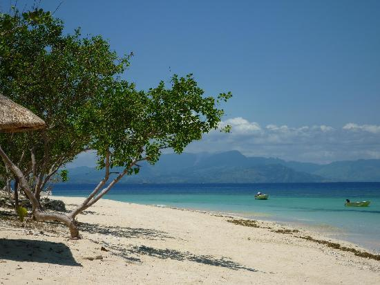 Navini Island Resort: View of the beach