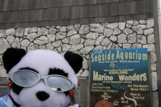 Seaside, OR: Can't wait to feed the seals...ok, mom will feed them!