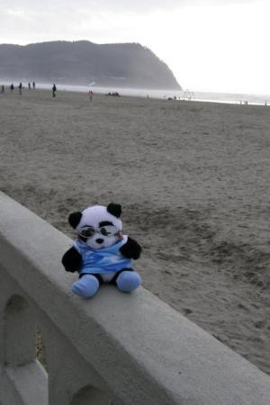 Hugo at Seaside Beach promenade