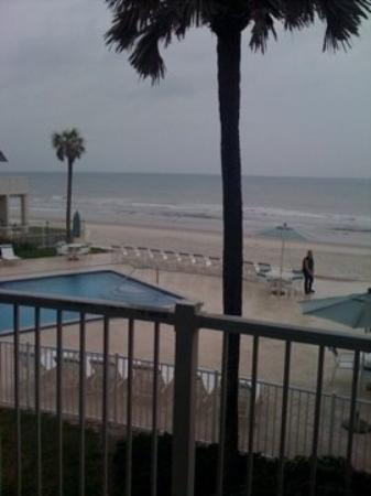 Bilde fra New Smyrna Beach