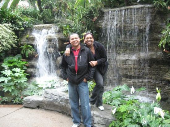 Nashville, TN: Tennessee Gardens