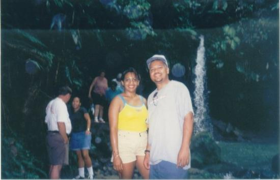 Dominica Forest BVI