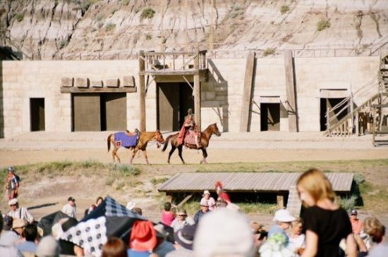 Drumheller, Canada: Romans and horsies