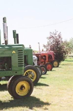 Drumheller, Canada: Just down the road from us...some tractors