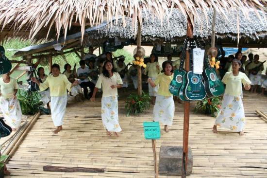 Bohol Island One Day Tour - PTN Travel Corp: Folkdans på floden. Underhållning och lunch.